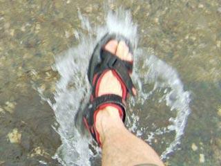 夏の川にて