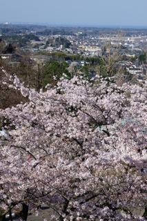 桜のある風景〜福島方向
