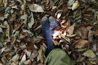 フカフカな落ち葉や土の感触